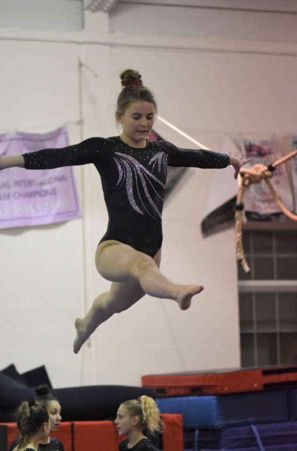 NPHS Student Gymnasts Soar to New Heights